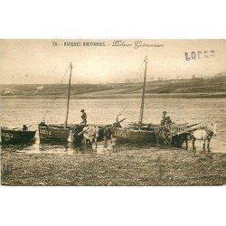 56 MORBIHAN. Pêcheurs Goémonniers avec Barques bretonnes