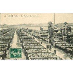44 LE CROISIC. La Culture des Huîtres. Ostréïculteurs et Crustacés