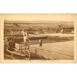 17 LE CHAPUIS. Le Lavage dans le Parc à Huîtres