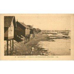 17 LE CHAPUS. Cabanes des Parqueuses d'Huîtres. Crustacés et Métiers de la Mer