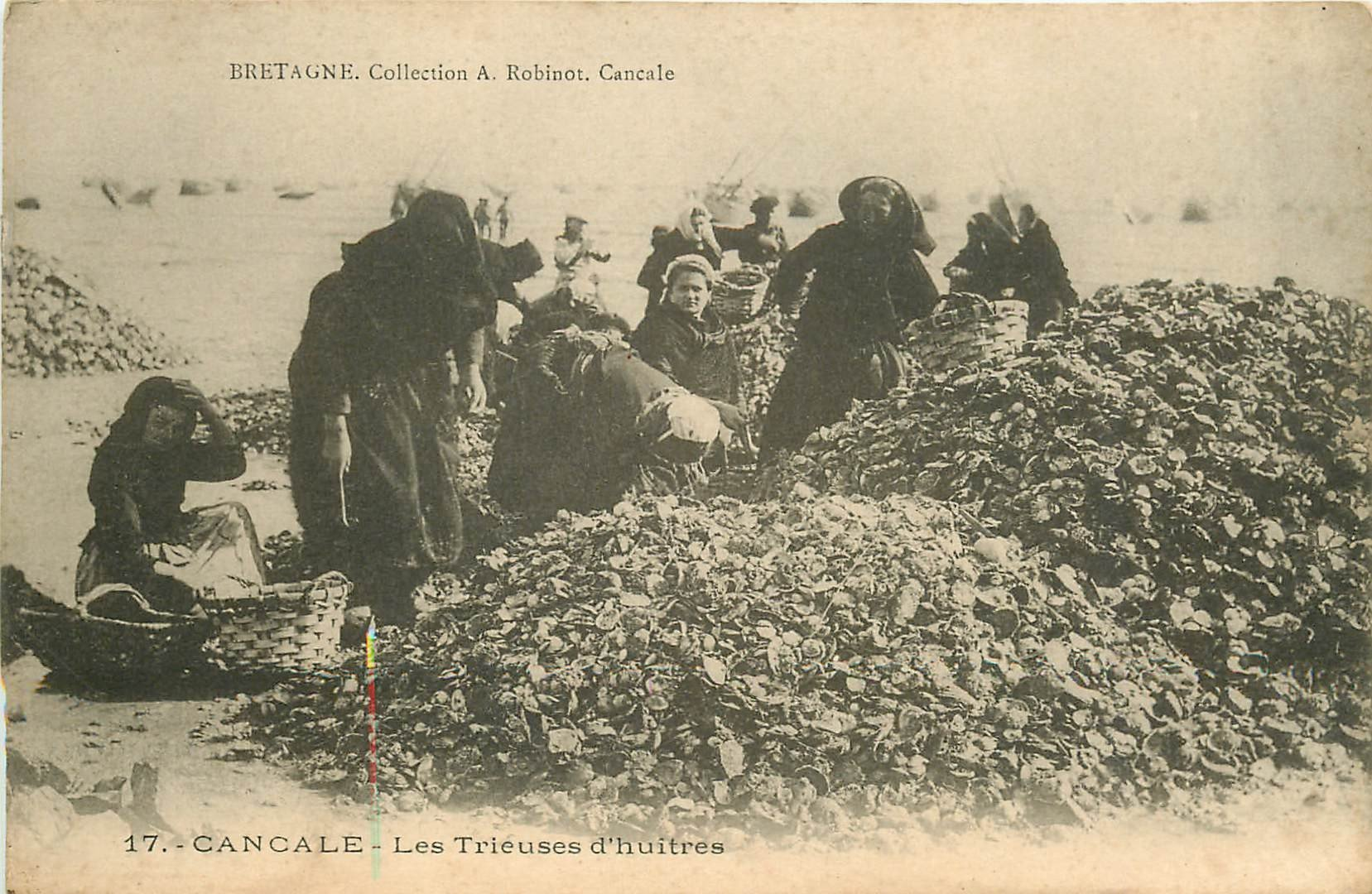35 CANCALE. Les Trieuses d'Huîtres. Collection Robinot. Carte postale ancienne vers 1900