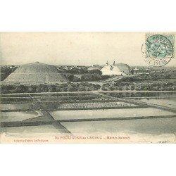 44 POULIGUEN au CROISIC. Marais Salants 1906. Paludiers Sel Mulons