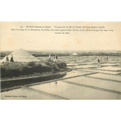 44 SAINT-NAZAIRE au CROISIC. Marais Salants de Bourg de Batz à Saillé. Saumaison, Paludiers, Sel et Mulons