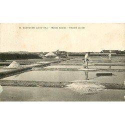 44 GUERANDE. La Récolte du sel par les Paludiers aux Marais Salants 1934