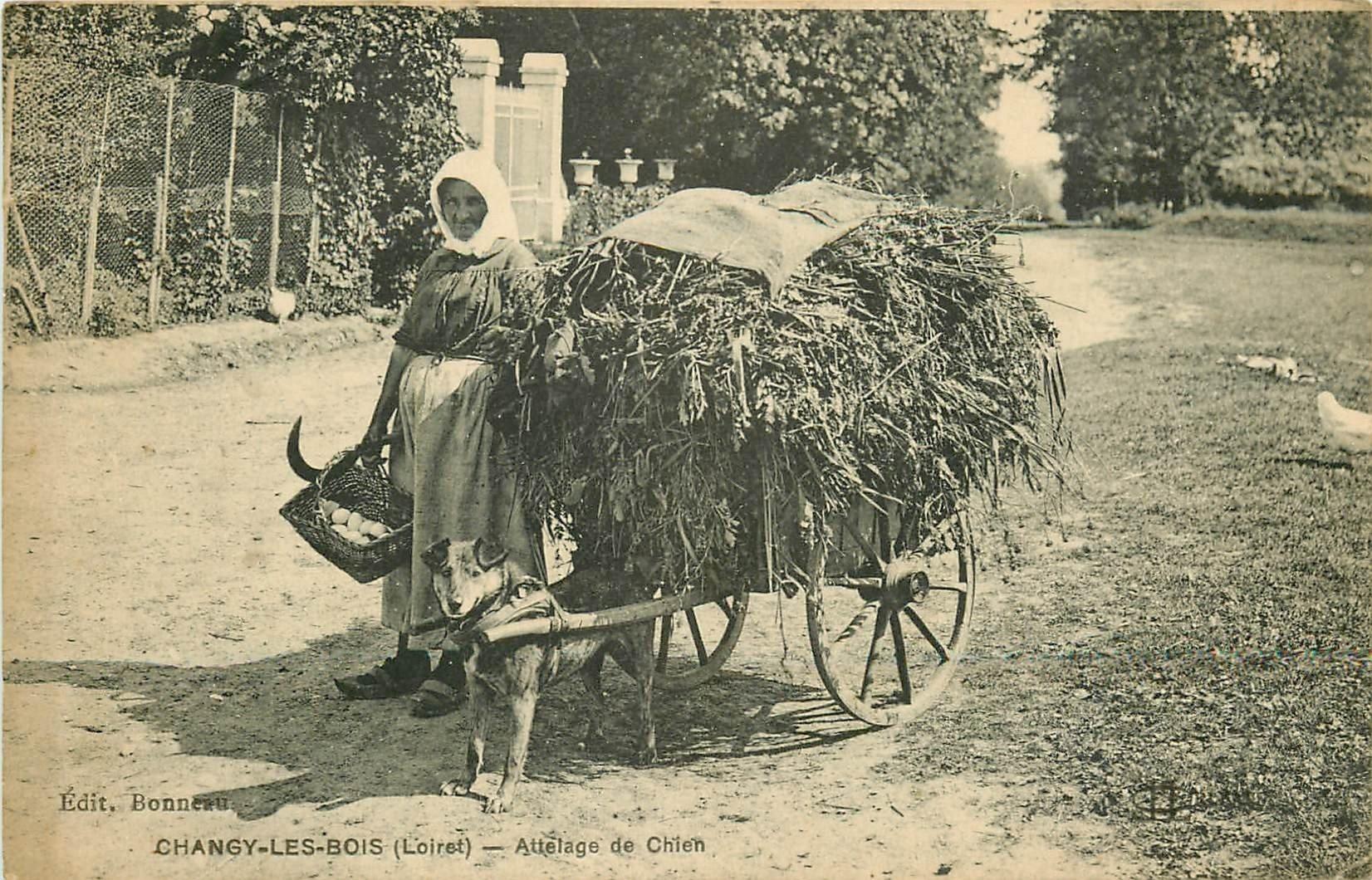 45 CHANGY-LES-BOIS. Paysanne et son attelage de Chien pour transport du Fourrage 1923