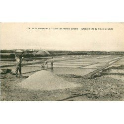 44 BATZ. Enlèvement du Sel à la Gède dans les Marais Salants. Paludiers et Mulons
