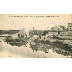 44 LE POULIGUEN. Enlèvement du Sel avec attelage dans les Marais Salants