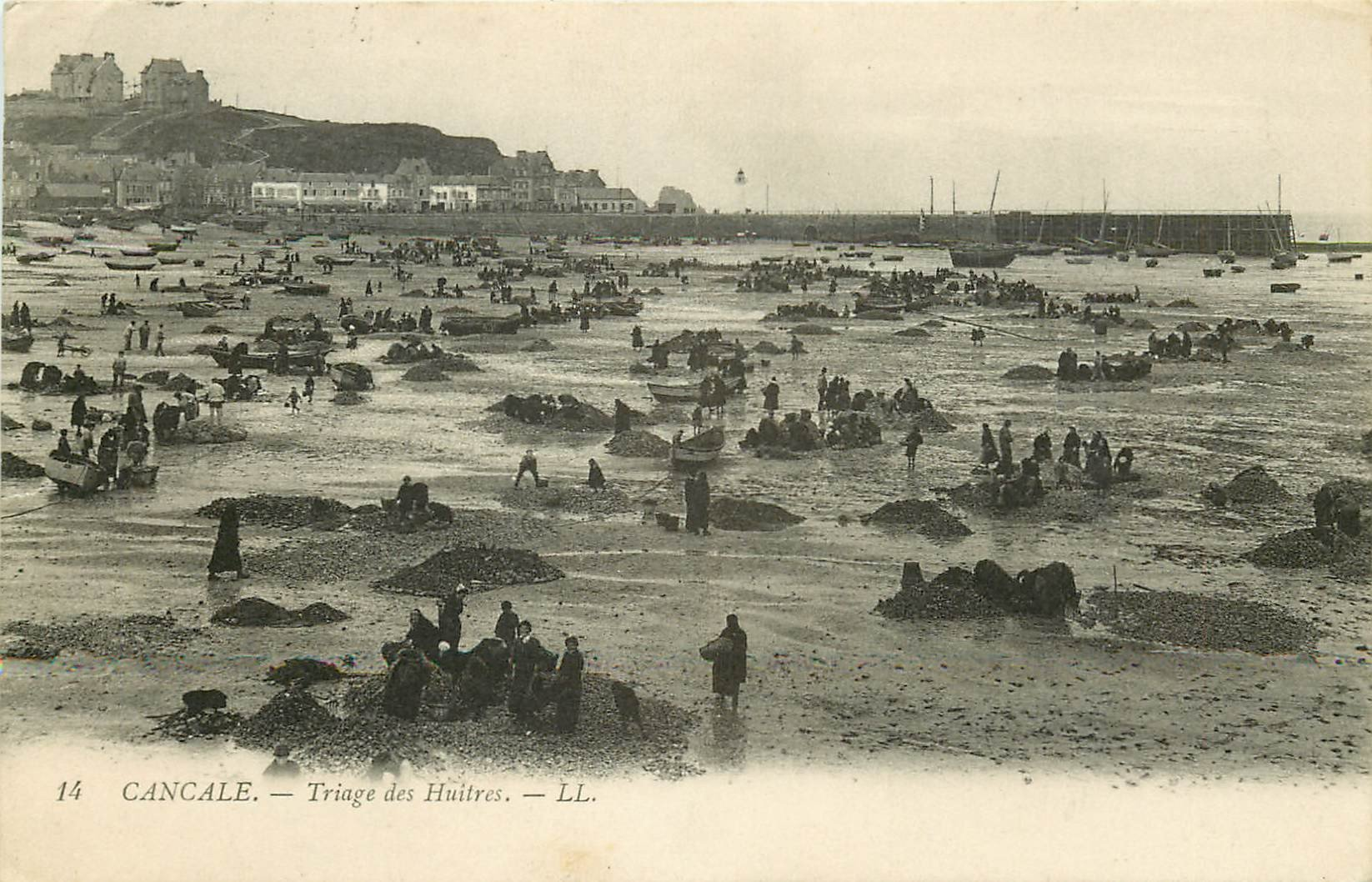 35 CANCALE. Triage des Huîtres. Métiers de la Mer 1910