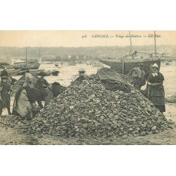 35 CANCALE. Le Triage des Huîtres 1913