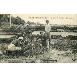 17 LE CHAPUS. Le Détroquage pour la Culture de l'Huître 1931 Ostréiculteurs et Pêcheurs