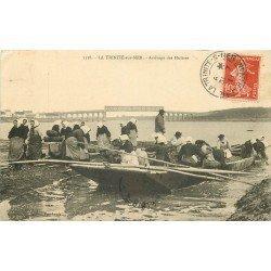 56 LA TRINITE-SUR-MER. Arrivage des Huîtres 1911. Pêcheurs et Parqueuses