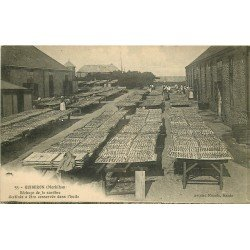 56 QUIBERON. Séchage de la Sardine destinée à être conservée dans l'huile 1915