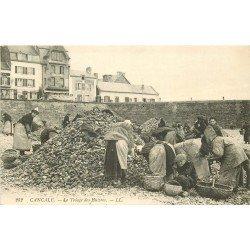 35 CANCALE. Le Triage des Huîtres. Métiers et Artisans de la Mer