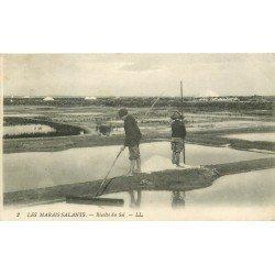 44 LES MARAIS SALANTS. La Récolte du Sel et les Etangs vers 1913