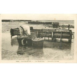 17 CHATELAILLON. Les Boucholeurs aux Réservoirs d'Huîtres 1940