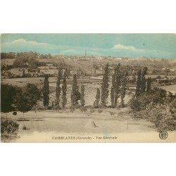33 CAMBLANES. Vue générale sur le Village et les Vignes.