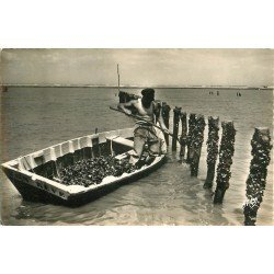 Photo Cpsm 1956 CHATELAILLON 17. Pêcheur de Moules aux Bouchots