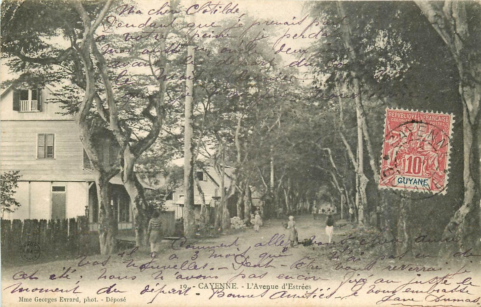 WW CAYENNE. L'Avenue d'Estrées 1906