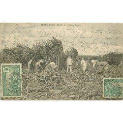 WW GUADELOUPE. Récolte de la Canne à Sucre 1907
