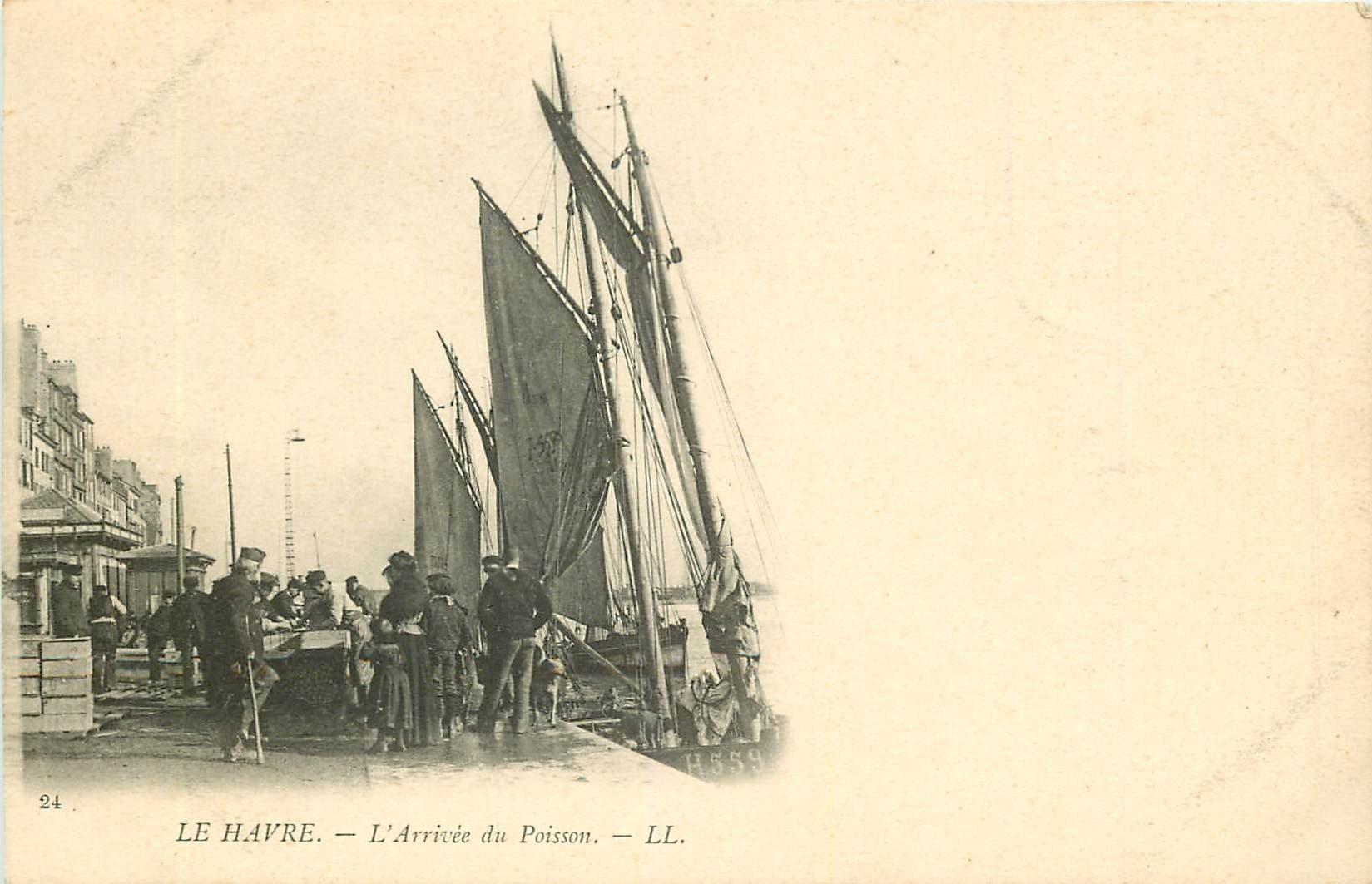 WW 76 LE HAVRE. L'Arrivée du Poisson au Port