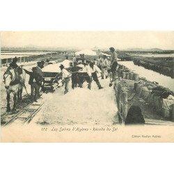 WW 83 LES SALINS D'HYERES. La Récolte du Sel avec Cheval et wagonnets