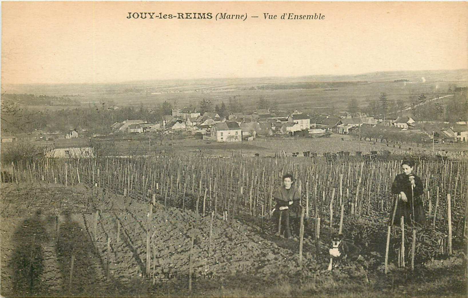 WW 51 JOUY-LES-REIMS. Vue d'ensemble sur les Vignes avec cultivatrices