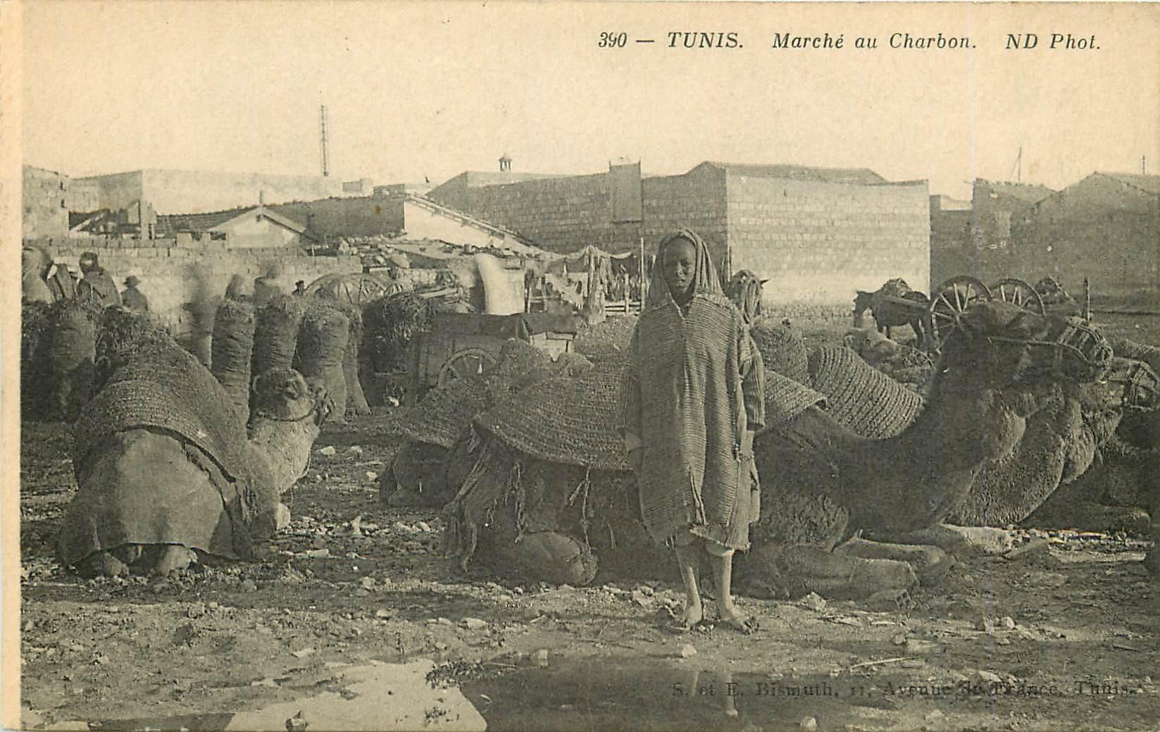 WW TUNIS. Marché au Charbon avec Chameaux