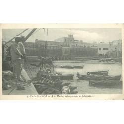WW CASABLANCA. Débarquement de Chameaux à la Marine 1914