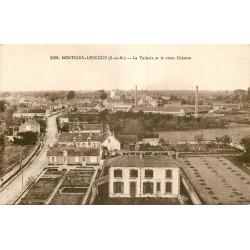 WW 77 MONTIGNY-LENCOUP. Tuilerie et Château