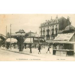 WW 66 PERPIGNAN. Palmarium et kiosque à cartes postales