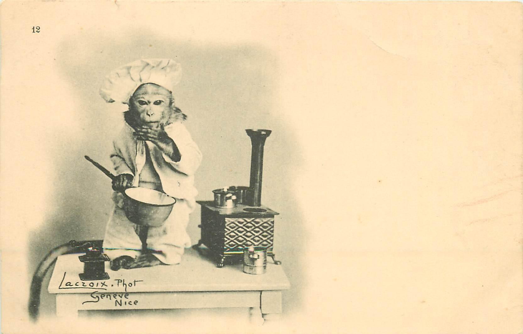 WW Un Singe Cuisinier par Lacroix à Genève vers 1900