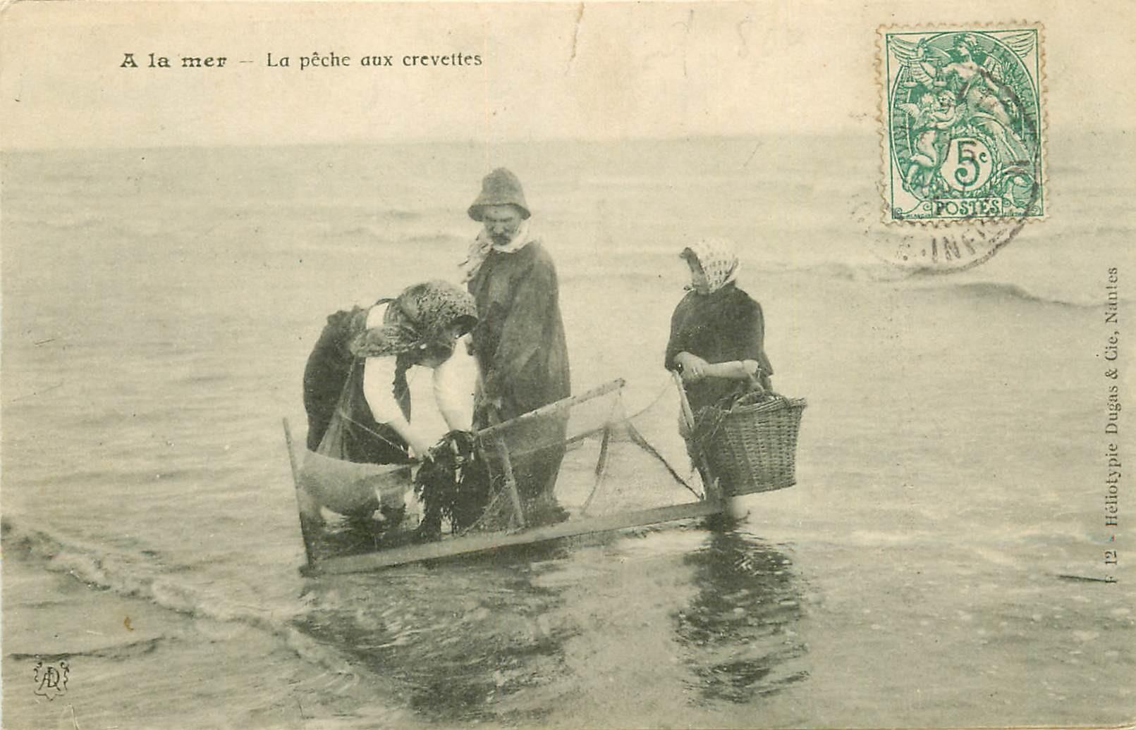 PECHEURS ET METIERS DE LA MER. La Pêche aux Crevettes vers 1905