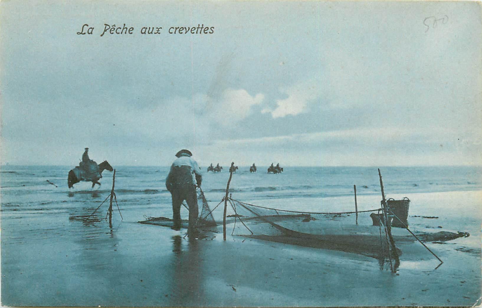 DE PANNE. La Pêche aux Crevettes en Belgique