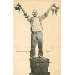 30 LES VENDANGES DANS LE MIDI. Vendangeurs et Raisins 2 cartes postales vers 1900
