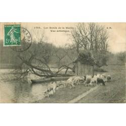 2 Cpa 94 BRY-SUR-MARNE. Troupeau de Moutons et Source d'Argent au Petit Bry 1909