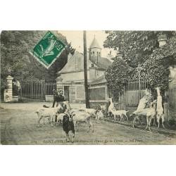 95 SAINT-PRIX. Chevrière avec ses Chèvres Place de la Croix 1910