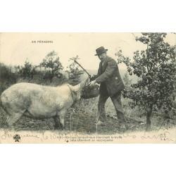 24 EN PERIGORD. Groupe sympathique cherchant la Truffe 1904, la Bête attendant sa récompense
