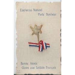 GUERRE 1914-18. Véritable Edelweiss avec vrai ruban tricolore