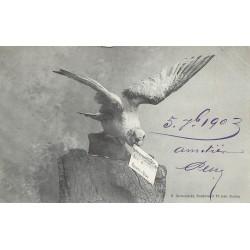 17 ROYAN. Une Mouette apportant une carte postale 1903