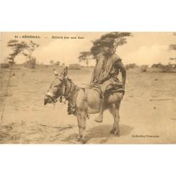 SENEGAL. Sévère sur son âne