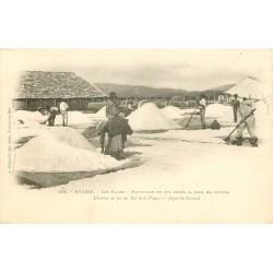 83 HYERES. Les Salins nettoyage du Sel après mise en mottes