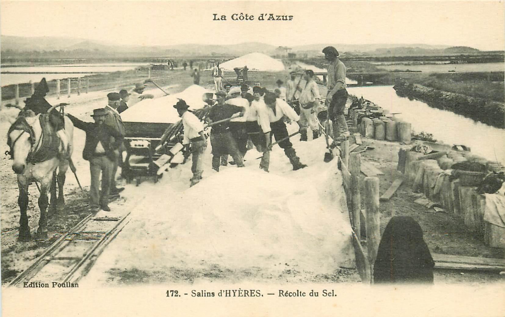 83 HYERES. Récolte du Sel aux salins et transport par wagonnets et Chevaux
