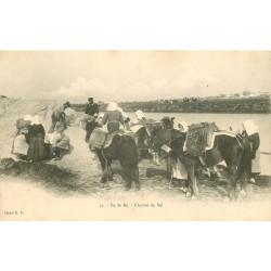 17 ILE DE RE. Charroi du Sel sur ânes, Paludières et Paludiers vers 1900