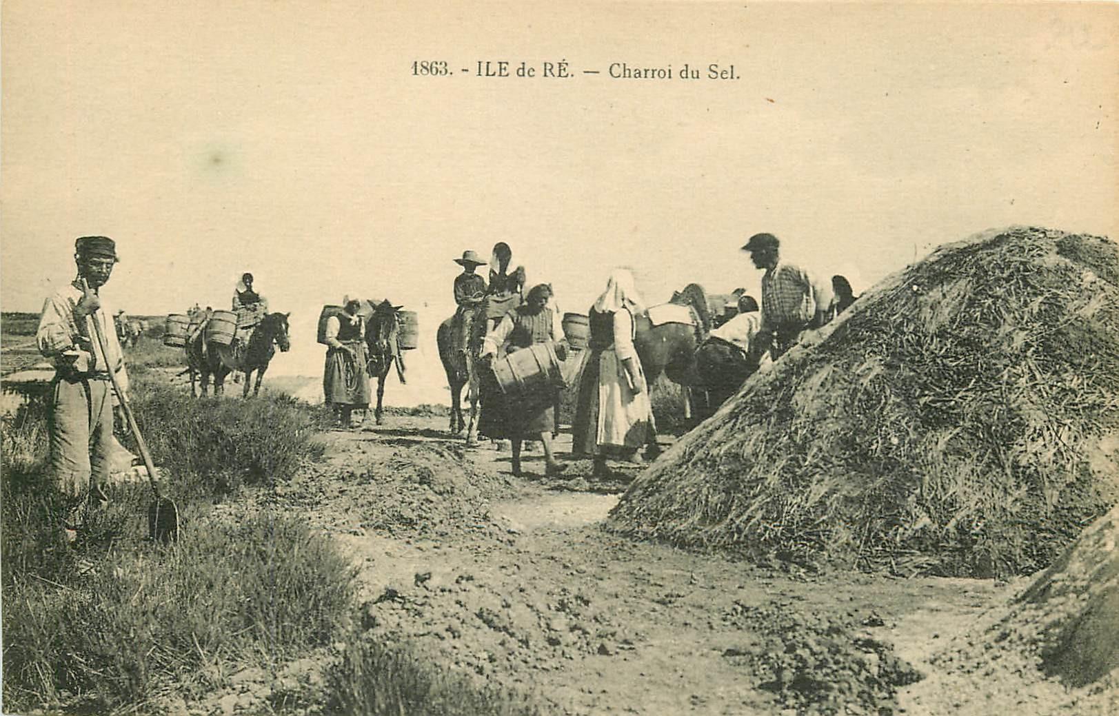 17 ILE DE RE. Charroi du Sel sur Chevaux. Paludières et Paludiers vers 1900