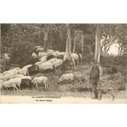 40 LA LANDE. Vieux Berger et son troupeau de Moutons 1919