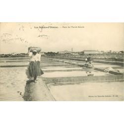85 LES SABLES-D'OLONNE. Paludières dans les Marais Salants 1911