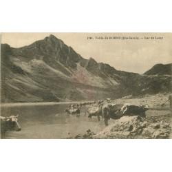 74 VALLEE DE BORNE. Vaches au Lac de Lessy