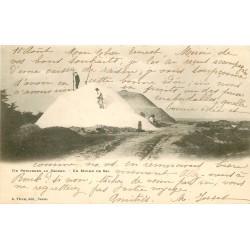 44 LE POULIGUEN. Paludiers sur un Mulon de Sel vers 1900