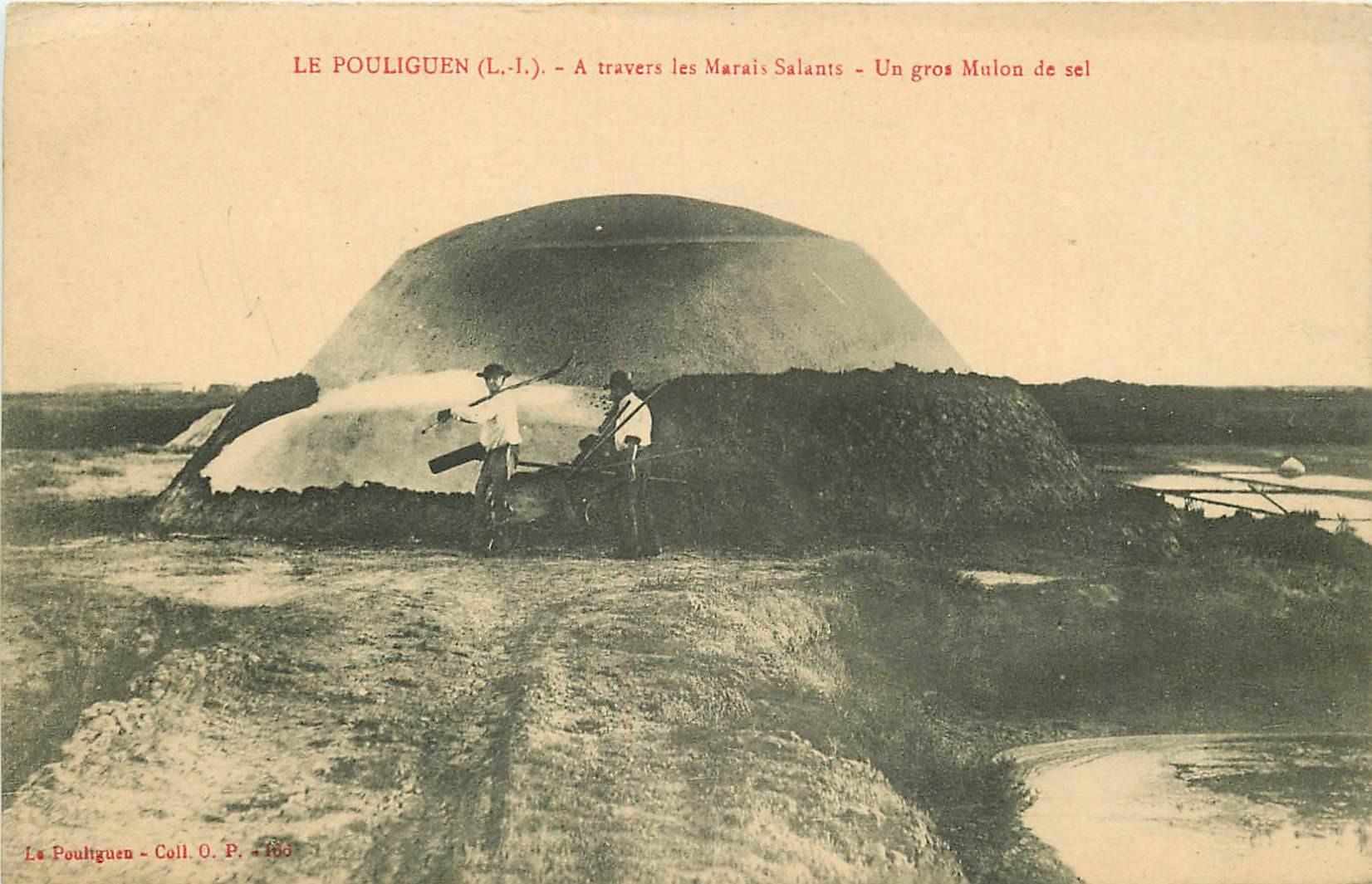 44 LE POULIGUEN. Un gros Mulon de Sel et Paludiers à travers les Marais Salants