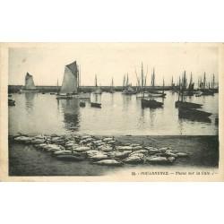29 DOUARNENEZ. Bateaux pêcheurs de Thons sur la Cale